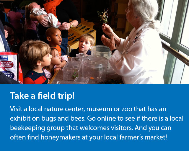 Take a field trip to learn more about bugs and bees
