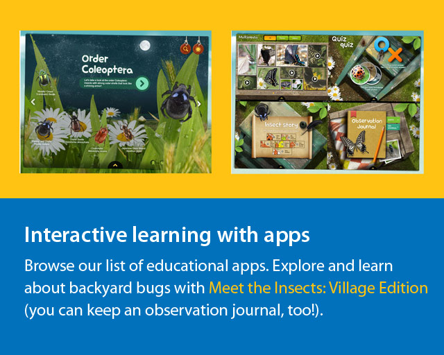 screenshot of apps about bees.