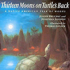 illustrated cover of Thirteen Moons on Turtle's Back showing a turtle and flamingos by water with the moon in the sky