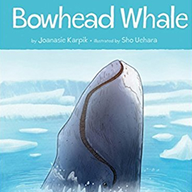 national geographic kids readers whales national geographic kids readers level 3