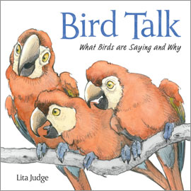 Bird Talk What Birds Are Saying And Why