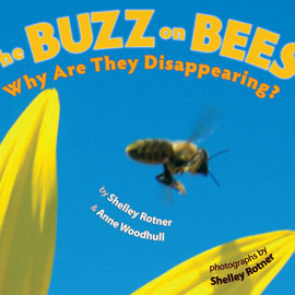 photo cover of The Buzz on Bees showing bee against blue sky