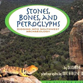 "cover of ""Stones, Bones, and Petroglyphs"" showing a lizard on a rock in fron of a valley"