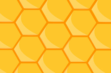 illustration of the hexagons of a bee hive