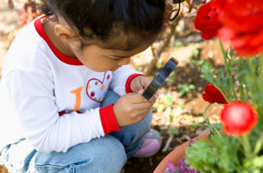 young child looking at a plant through a magnifying glass