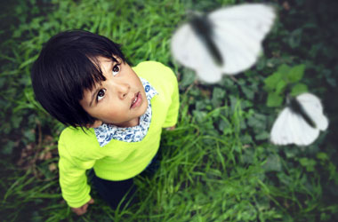 young child looking up at butterflies