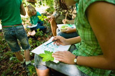 group of children outside drawing leaves