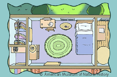 drawing of a bedroom as seen from above