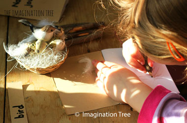 child sitting at a desk with a bird's nest and she is writing