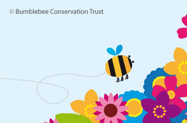 graphic from the bumblebee conservation trust showing flowers and a flying bumblebee in the corner