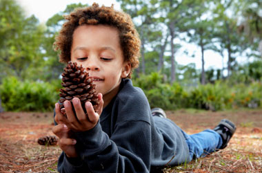 young child holding a pinecone