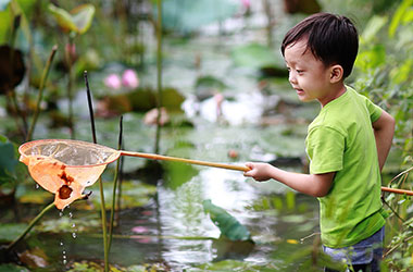 a child in a stream holding something in a net