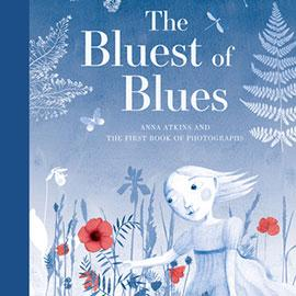illustrated cover of The Bluest of Blues showing a young girl outside and everything is in shades of blue and white, except red flowers.