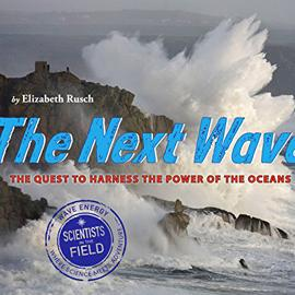 "photo cover of ""The Next Wave"" showing waves hitting rocks"