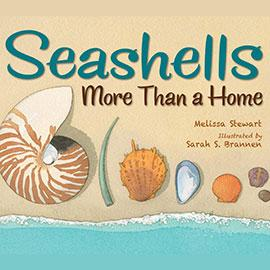 illustrated cover of Seashells, More Than a Home with several different shells laid out on the sand.